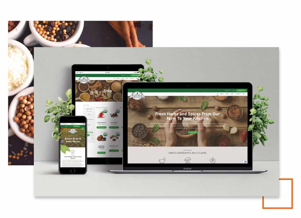 reno web design