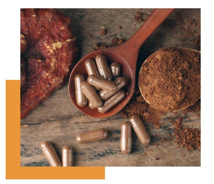 full spectrum mycoproducts