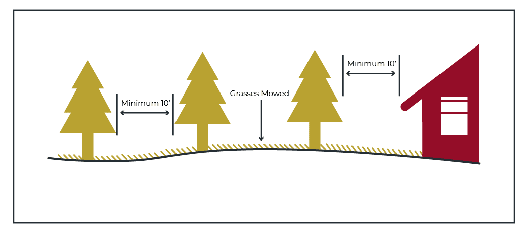Figure 603.2.2 10-foot separation Between tree crowns and structures