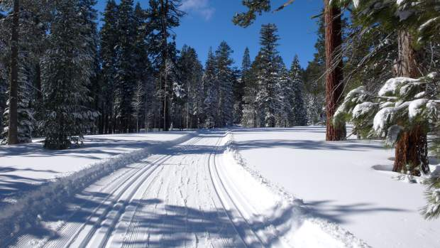 Reno Trucking Industry, winter freight shipping