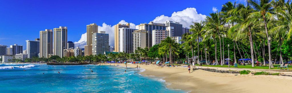 Hawaii performance tour beach with green palm trees lined up and the city buildings in the background