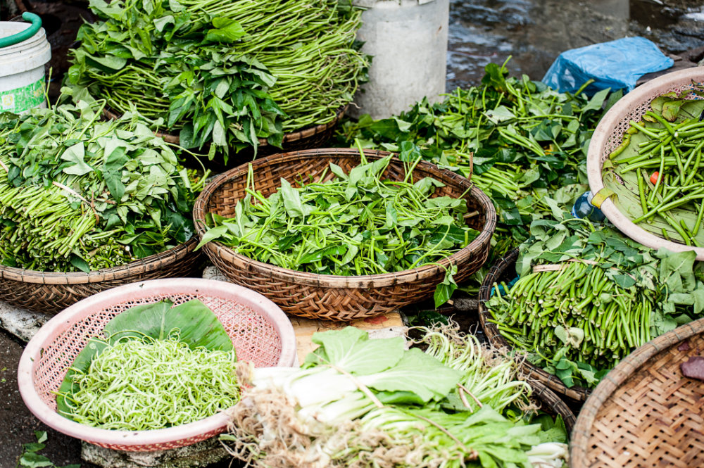 wholesale herbs and botanicals